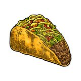 Tacos - mexican traditional food. Vector color vintage engraved royalty free illustration