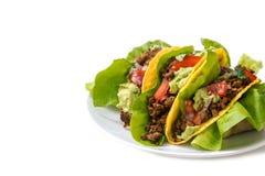 Tacos mexicanos, cáscaras crujientes del maíz rellenas con la abeja de tierra frita Foto de archivo libre de regalías
