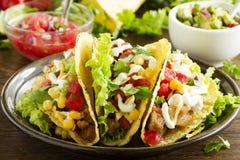 Tacos mit Schweinefleisch Lizenzfreies Stockfoto