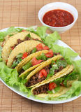 Tacos on plate vertical Royalty Free Stock Image