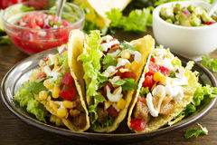 Tacos with pork Royalty Free Stock Photo