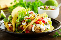 Tacos. With pork and tomato salsa royalty free stock photo