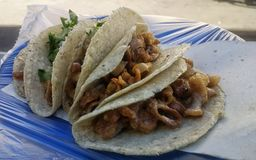 Tacos squisito immagine stock