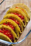 Tacos with tomatoes Stock Images