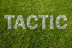 Tactic written on meadow Stock Photos