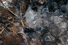 Tacto de Jack Frost imagen de archivo