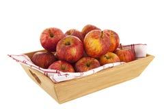 Tacy czerwieni jabłka fotografia stock
