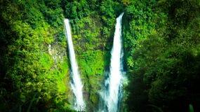Tad Fan waterfall in Laos stock photo