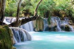 Tad Kwang Sri Waterfall , Luang Prabang Province, Loa. Royalty Free Stock Photos
