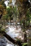 Tad Sae Waterfall Royalty Free Stock Photo