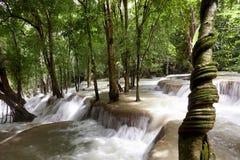 Tad Sae Waterfall Royalty Free Stock Image