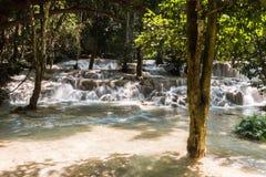 Tad Sae Waterfall, Luang Prabang Stock Afbeeldingen