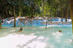 Tad Sae Waterfall, Luang Prabang Stock Foto