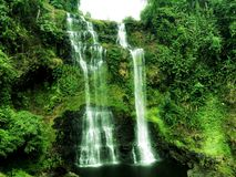 Tad Yeuang Waterfall Stockbilder
