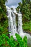 Tad Yuang stavade också den Tad Gneuang vattenfallet royaltyfri bild