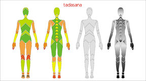 Tadasana Stock Photography