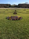 Tadellos manikürter Rasen und Blume Stockbilder