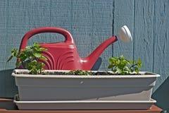 Tadellos und Bewässerungspotentiometer Lizenzfreie Stockbilder