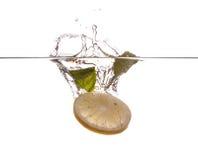 Tadellose Blätter und Zitronenscheibe Stockbilder