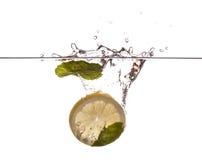 Tadellose Blätter und Zitronenscheibe Stockfoto