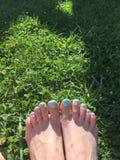 tadelloser Nagellack im grünen Gras Lizenzfreie Stockfotografie