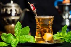 Tadelloser Tee Stockbilder