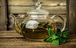 Tadelloser Tee in der Glasteekanne Stockfoto
