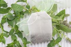 Tadelloser Teebeutel und Anlage der frischen Minze Stockfoto