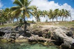 Tadine Bay Shoreline stock photo