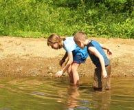 tadpoles catchin стоковая фотография rf