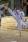Tae Kwon Do Stockfoto