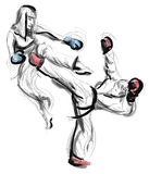 Tae-Kwon Do En normalformat hand dragen illustration Arkivfoton