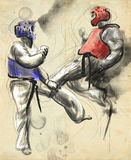 Tae-Kwon Do En normalformat hand dragen illustration Royaltyfri Foto