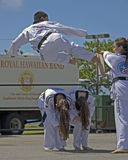 Tae Kwon Do Flight Arkivfoton