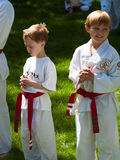 Tae Kwon Do. 2012 J. W. Kim Tae Kwon Do school belt test in the park Stock Photography