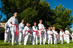 Tae Kwon Do. 2012 J. W. Kim Tae Kwon Do school belt test in the park Royalty Free Stock Images