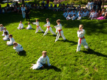 Tae Kwon Do. 2012 J. W. Kim Tae Kwon Do school belt test in the park Royalty Free Stock Photo
