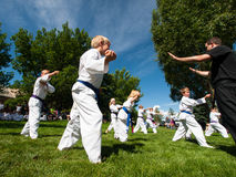 Tae Kwon Do. 2012 J. W. Kim Tae Kwon Do school belt test in the park Royalty Free Stock Image