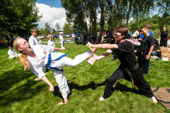 Tae Kwon Do Royalty Free Stock Photography