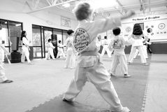 Tae Kwon Do / Korean Martial Arts royalty free stock images