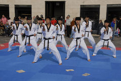 Tae kwon do peace corps Royalty Free Stock Image