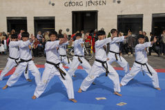 Tae kwon do peace corps Stock Photography