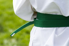 Tae Kwon Do. Student practicing in the park Stock Photography