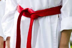 Tae Kwon Do. Student practicing in the park Royalty Free Stock Photos