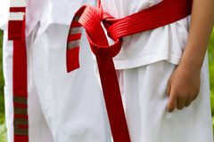 Tae Kwon Do. Student practicing in the park Stock Images
