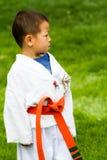 Tae Kwon Do Royalty Free Stock Photo