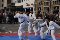 Tae kwon robi korpusów pokojowych zdjęcie royalty free
