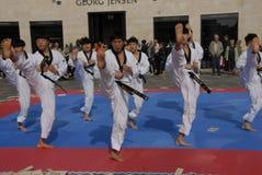 Tae kwon robi korpusów pokojowych obrazy royalty free