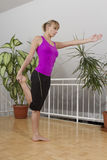 Taebo fitness workout stretching 20 Royalty Free Stock Image