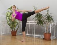 Taebo sprawności fizycznej trening 17 Obraz Stock